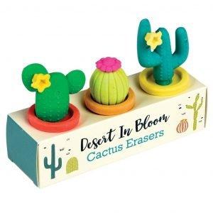 REX set 3 gomas de borrar cactus